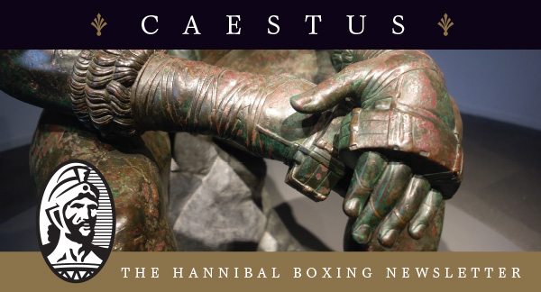 CAESTUS Newsletter Header